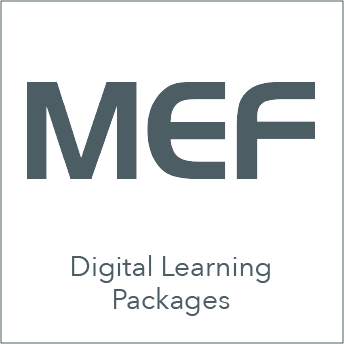 mef_icon