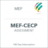 assessment_mef