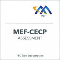 assessment_mef-300x300_r1