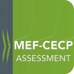 mef-assessment